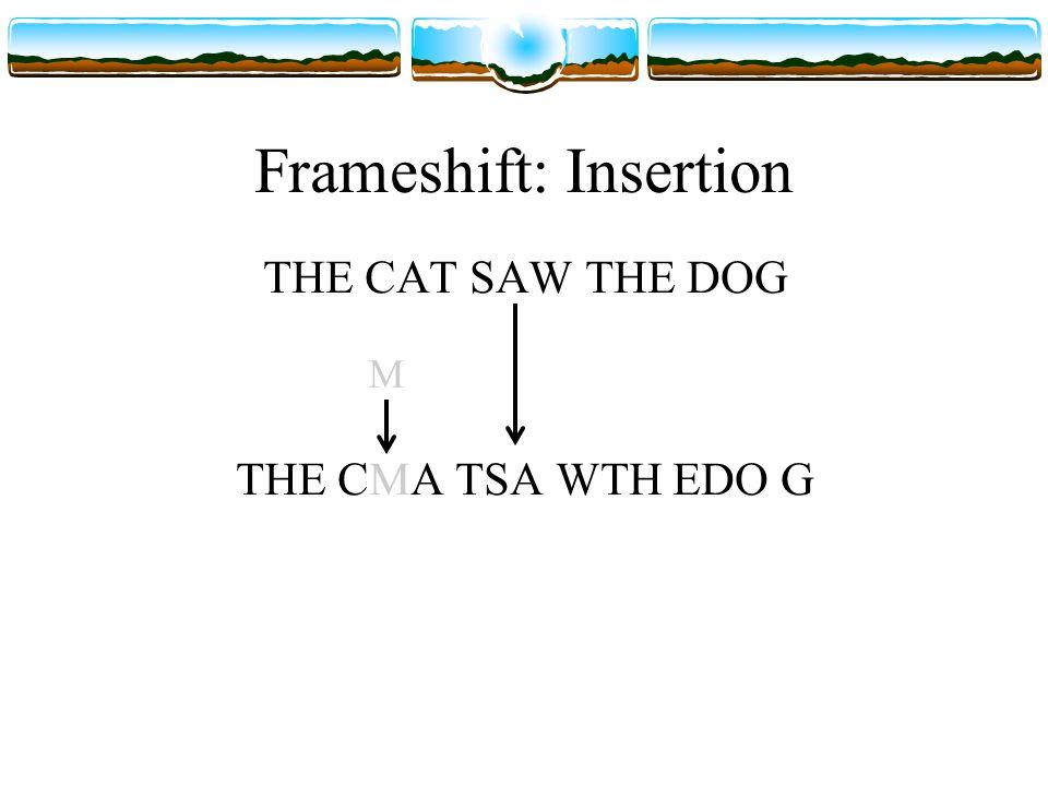 Frameshift: Insertion THE CAT SAW THE DOG THE CMA TSA WTH EDO G M