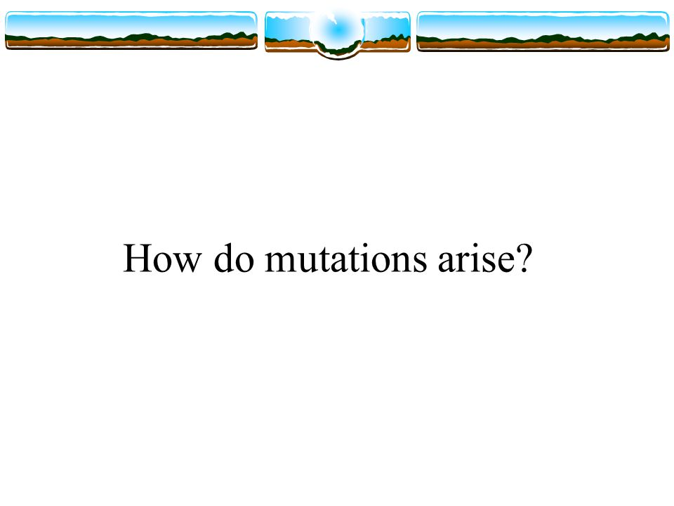 How do mutations arise