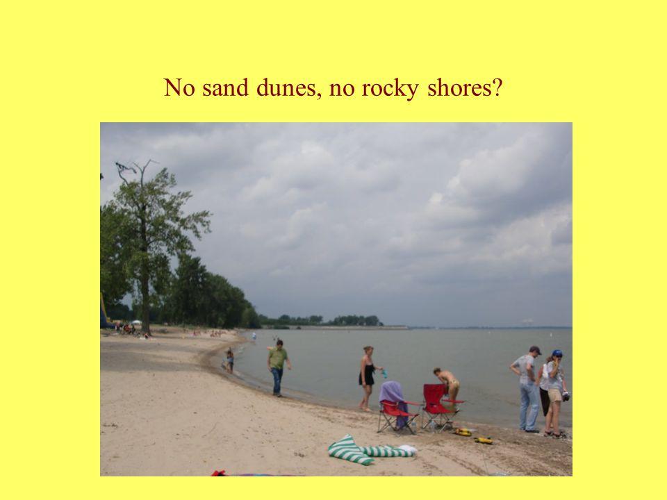 No sand dunes, no rocky shores