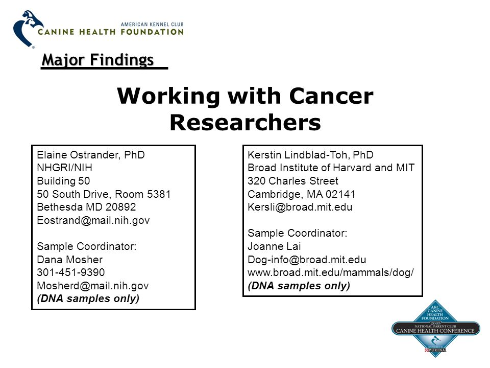 Major Findings Working with Cancer Researchers Elaine Ostrander, PhD NHGRI/NIH Building 50 50 South Drive, Room 5381 Bethesda MD 20892 Eostrand@mail.nih.gov Sample Coordinator: Dana Mosher 301-451-9390 Mosherd@mail.nih.gov (DNA samples only) Kerstin Lindblad-Toh, PhD Broad Institute of Harvard and MIT 320 Charles Street Cambridge, MA 02141 Kersli@broad.mit.edu Sample Coordinator: Joanne Lai Dog-info@broad.mit.edu www.broad.mit.edu/mammals/dog/ (DNA samples only)