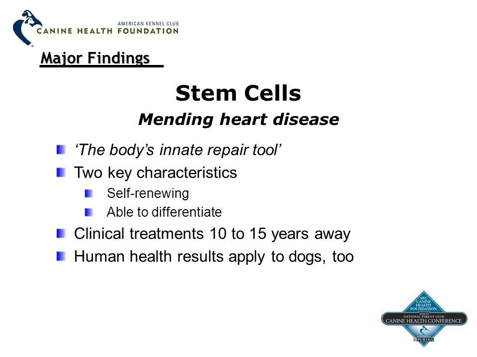 Major Findings Stem Cells Mending heart disease 'The body's innate repair tool' Two key characteristics Self-renewing Able to differentiate Clinical treatments 10 to 15 years away Human health results apply to dogs, too