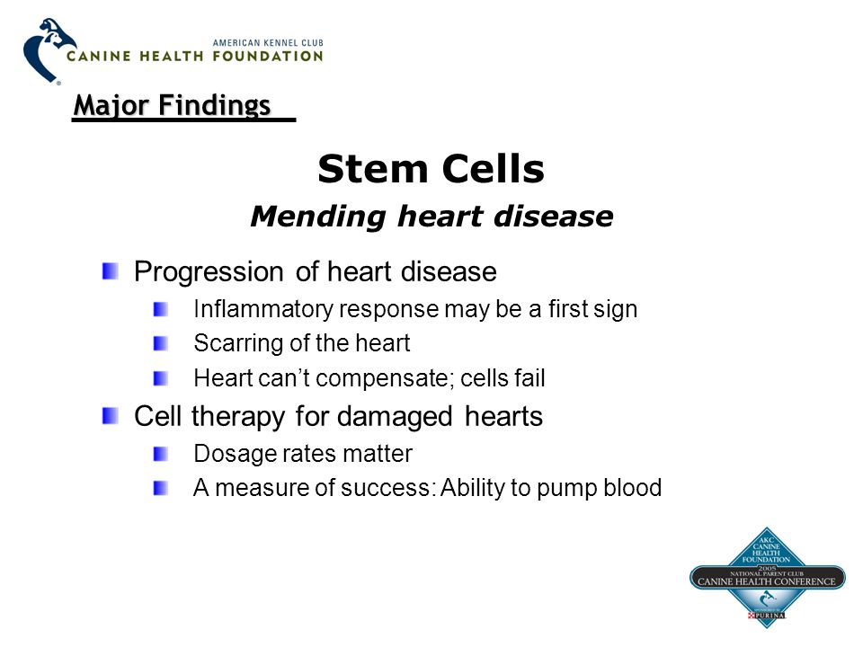 Major Findings Stem Cells Mending heart disease Progression of heart disease Inflammatory response may be a first sign Scarring of the heart Heart can't compensate; cells fail Cell therapy for damaged hearts Dosage rates matter A measure of success: Ability to pump blood