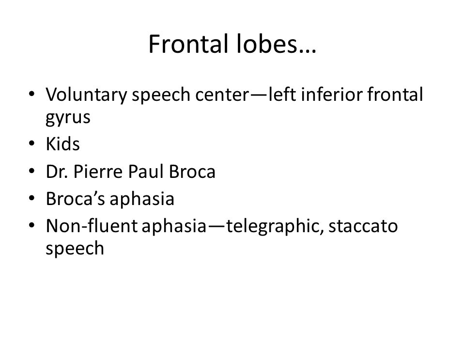 Frontal lobes… Voluntary speech center—left inferior frontal gyrus Kids Dr. Pierre Paul Broca Broca's aphasia Non-fluent aphasia—telegraphic, staccato