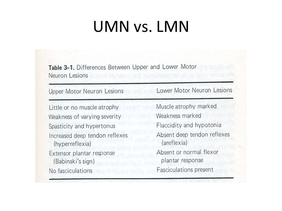 UMN vs. LMN