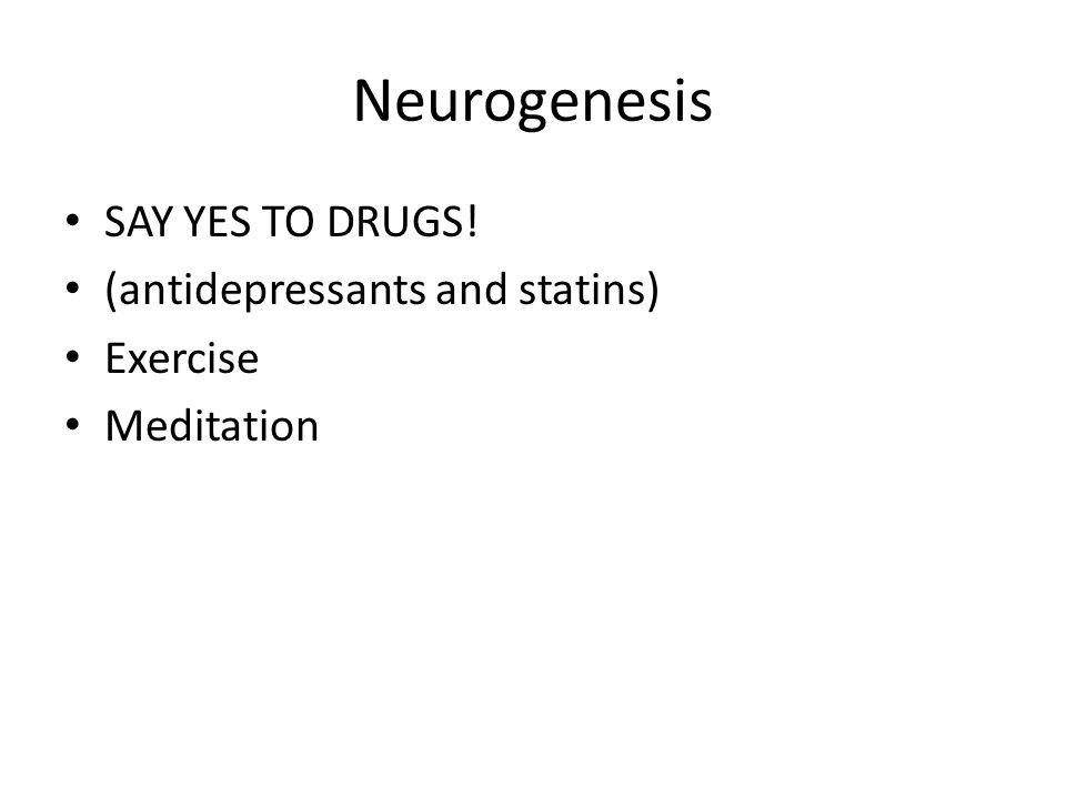 Neurogenesis SAY YES TO DRUGS! (antidepressants and statins) Exercise Meditation
