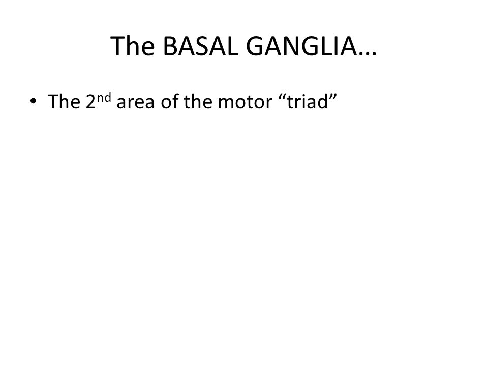 """The BASAL GANGLIA… The 2 nd area of the motor """"triad"""""""