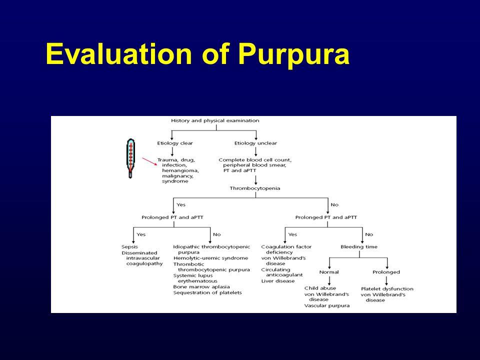 Evaluation of Purpura