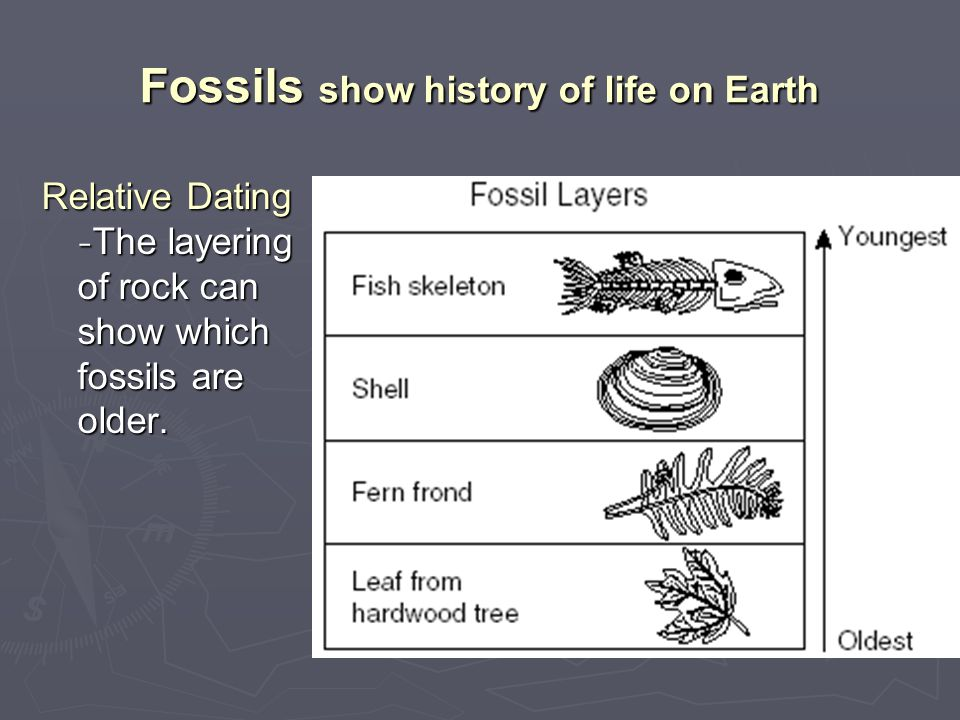Fossils show history of life on Earth Relative Dating - The layering of rock can show which fossils are older.
