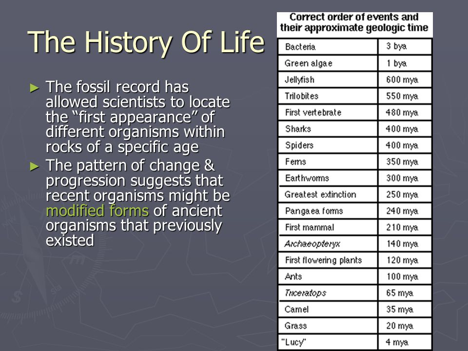 "The History Of Life ► The fossil record has allowed scientists to locate the ""first appearance"" of different organisms within rocks of a specific age"