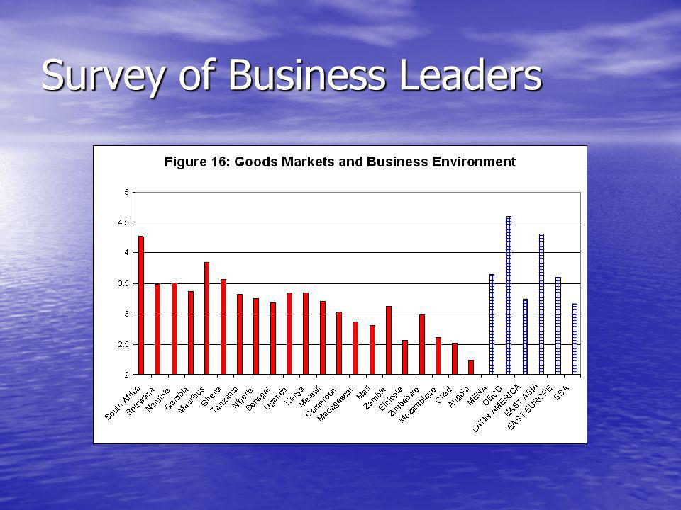 Survey of Business Leaders