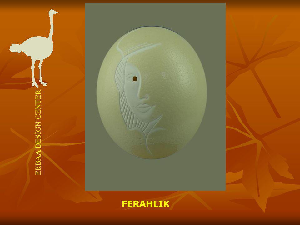 FERAHLIK ERBAA DESİGN CENTER