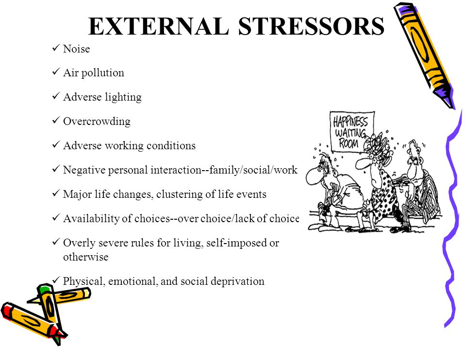 EXTERNAL STRESSORS Noise Air pollution Adverse lighting Overcrowding Adverse working conditions Negative personal interaction--family/social/work Majo