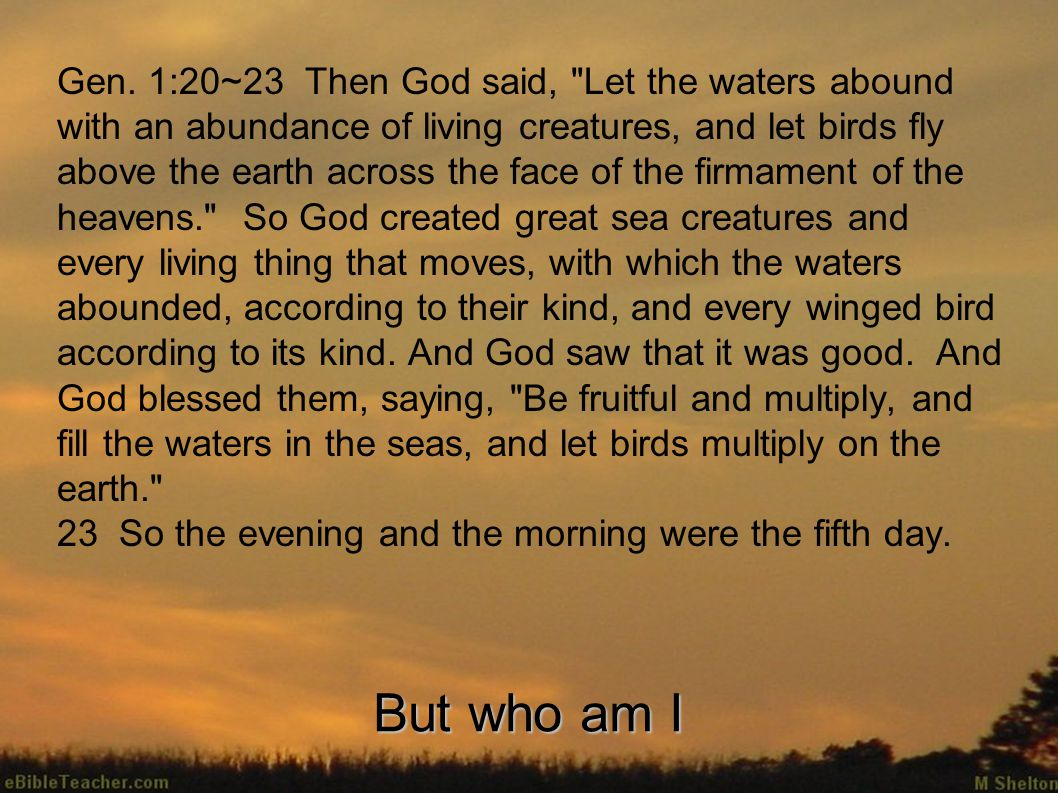 Gen. 1:20~23 Then God said,