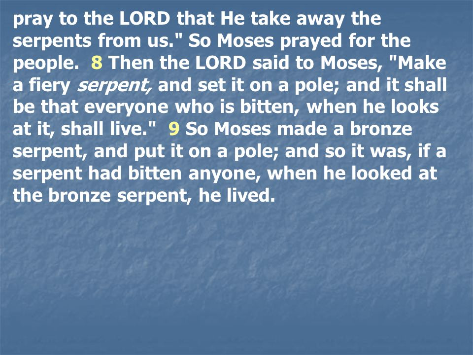 pray to the LORD that He take away the serpents from us. So Moses prayed for the people.