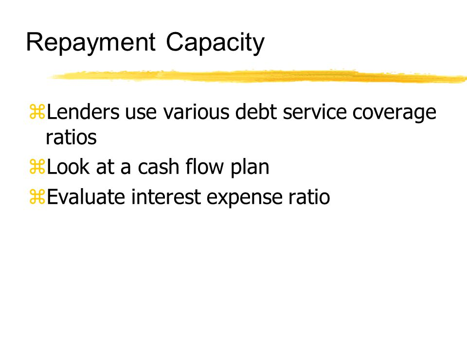 Repayment Capacity zLenders use various debt service coverage ratios zLook at a cash flow plan zEvaluate interest expense ratio