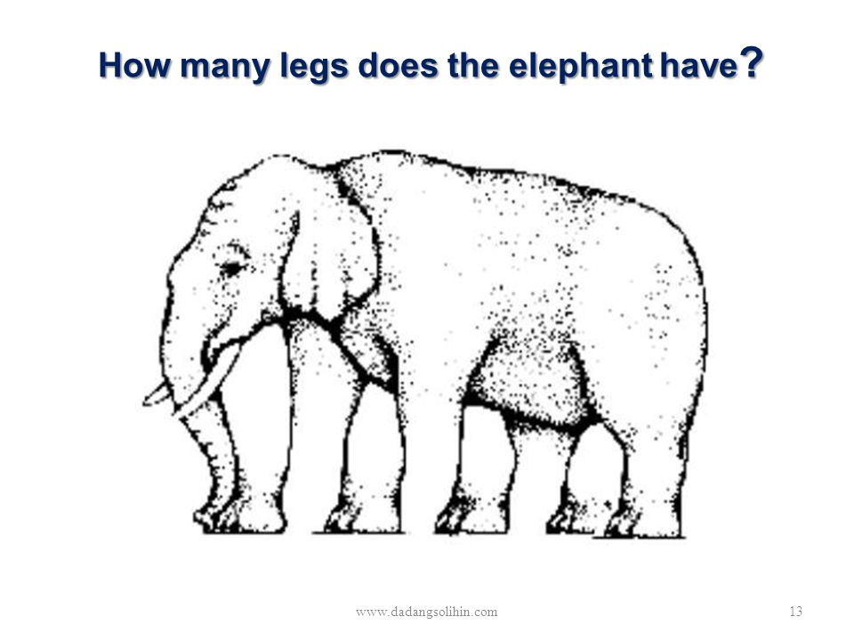 How many legs does the elephant have ? www.dadangsolihin.com13