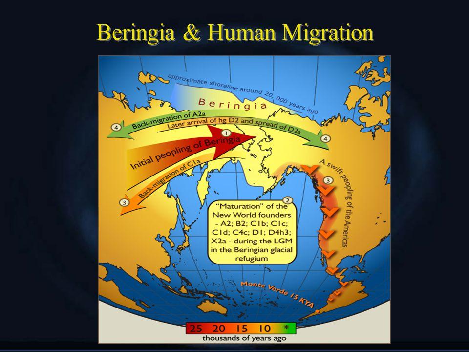 Beringia & Human Migration