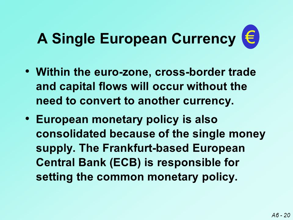 A6 - 20 Within the euro-zone, cross-border trade and capital flows will occur without the need to convert to another currency.