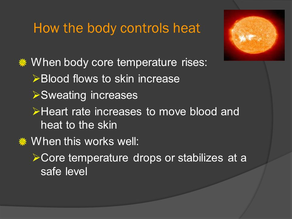 How the body controls heat When body core temperature rises:  Blood flows to skin increase  Sweating increases  Heart rate increases to move blood