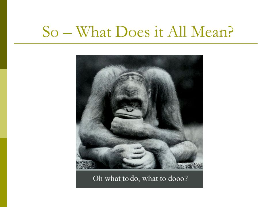 So – What Does it All Mean?
