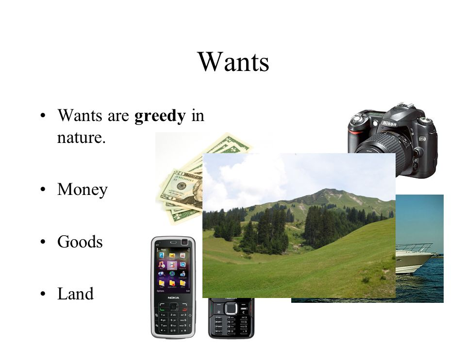 Wants Wants are greedy in nature. Money Goods Land