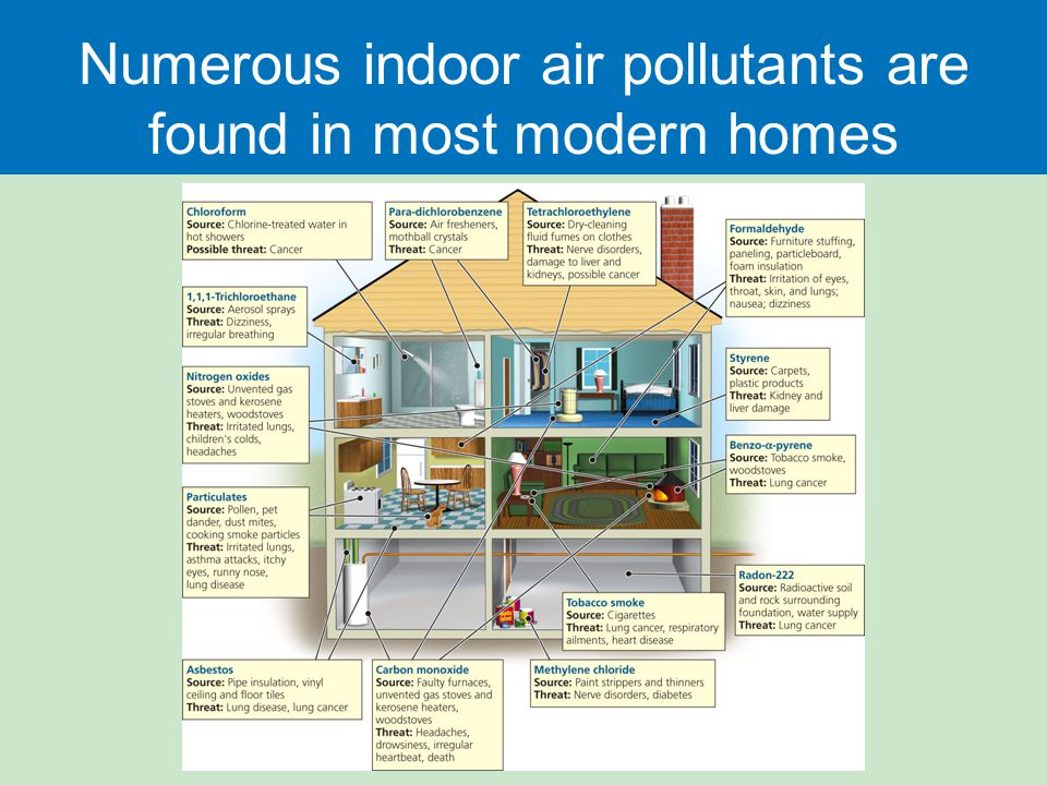 Numerous indoor air pollutants are found in most modern homes