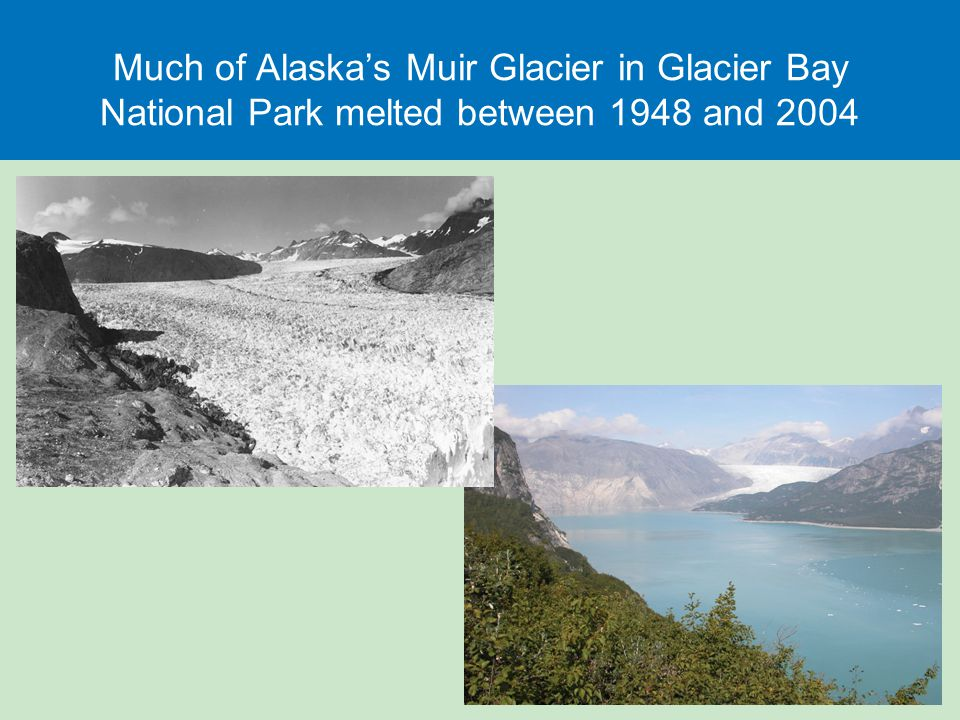 Much of Alaska's Muir Glacier in Glacier Bay National Park melted between 1948 and 2004