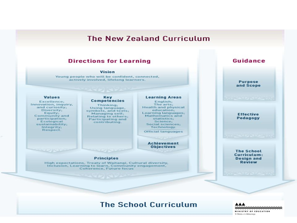 NZC Overview scan
