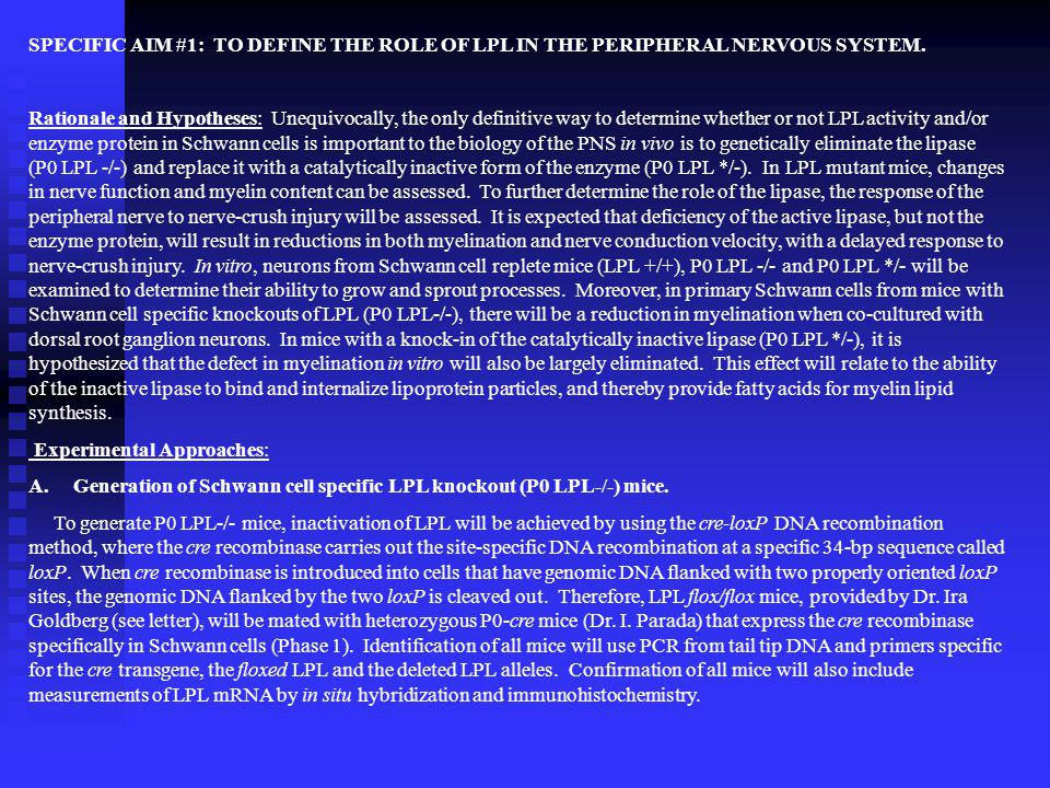 SPECIFIC AIM #1: TO DEFINE THE ROLE OF LPL IN THE PERIPHERAL NERVOUS SYSTEM.