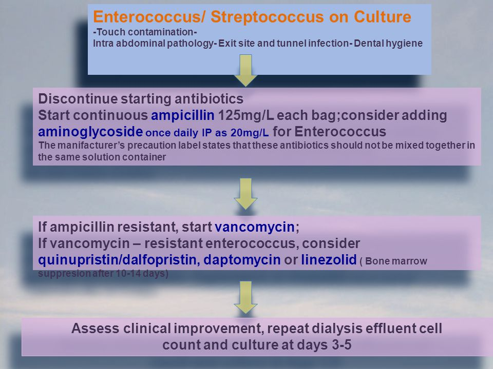 Enterococcus/ Streptococcus on Culture -Touch contamination- Intra abdominal pathology- Exit site and tunnel infection- Dental hygiene Enterococcus/ S