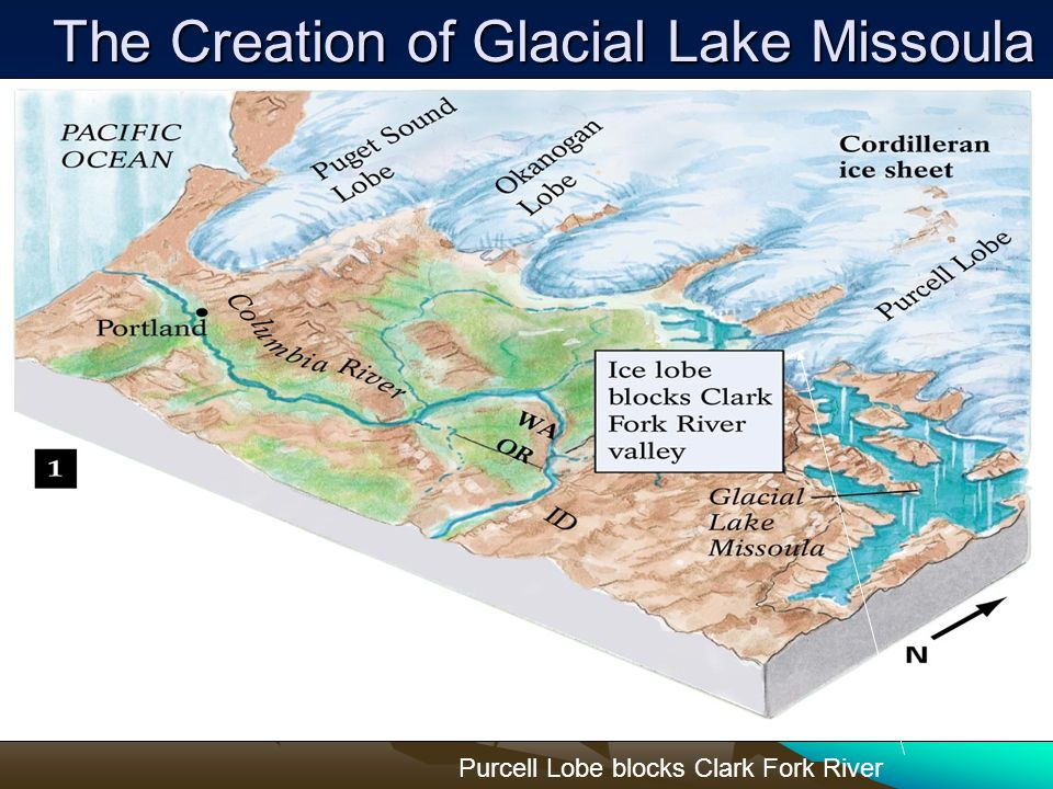The Creation of Glacial Lake Missoula Purcell Lobe blocks Clark Fork River