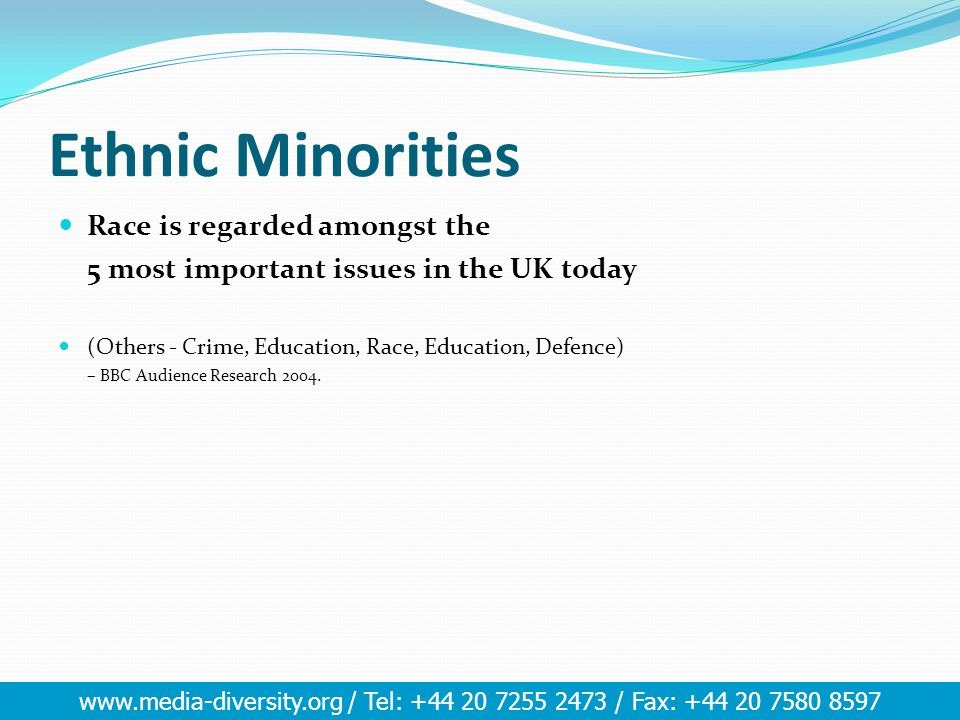www.media-diversity.org / Tel: +44 20 7255 2473 / Fax: +44 20 7580 8597 Ethnic Minorities Race is regarded amongst the 5 most important issues in the