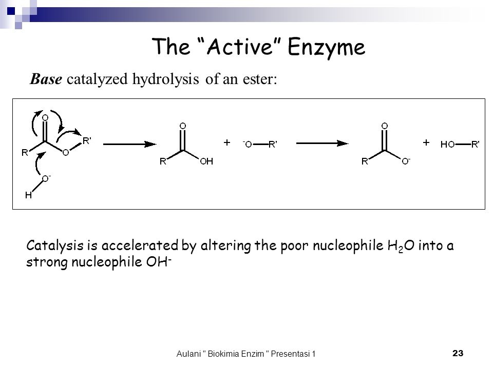 Aulani Biokimia Enzim Presentasi 1 23 The Active Enzyme Base catalyzed hydrolysis of an ester: Catalysis is accelerated by altering the poor nucleophile H 2 O into a strong nucleophile OH -