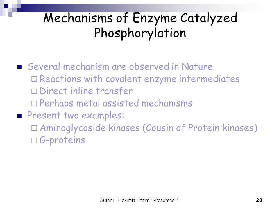 Aulani Biokimia Enzim Presentasi 1 28 Mechanisms of Enzyme Catalyzed Phosphorylation Several mechanism are observed in Nature  Reactions with covalent enzyme intermediates  Direct inline transfer  Perhaps metal assisted mechanisms Present two examples:  Aminoglycoside kinases (Cousin of Protein kinases)  G-proteins