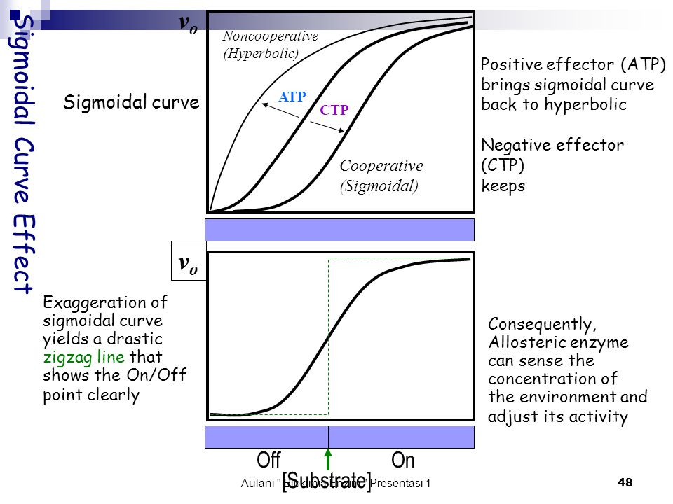 Aulani Biokimia Enzim Presentasi 1 48 Sigmoidal Curve Effect Sigmoidal curve Exaggeration of sigmoidal curve yields a drastic zigzag line that shows the On/Off point clearly Positive effector (ATP) brings sigmoidal curve back to hyperbolic Negative effector (CTP) keeps Consequently, Allosteric enzyme can sense the concentration of the environment and adjust its activity Noncooperative (Hyperbolic) Cooperative (Sigmoidal) CTP ATP vovo vovo [Substrate] OffOn