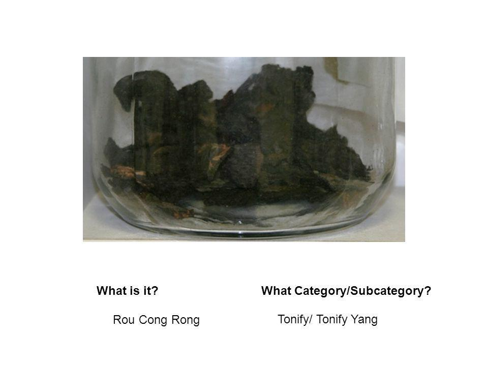 What is it?What Category/Subcategory? Rou Cong Rong Tonify/ Tonify Yang