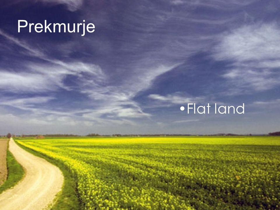 Prekmurje Flat land