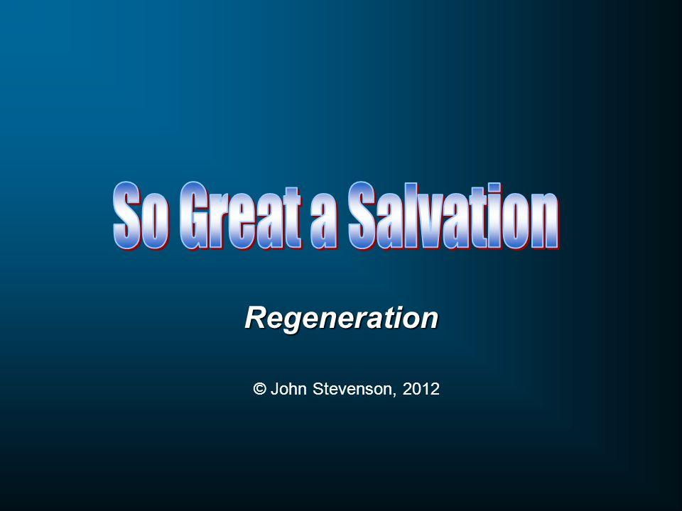 Regeneration © John Stevenson, 2012
