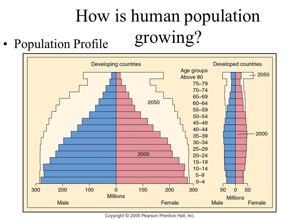 How is human population growing Population Profile
