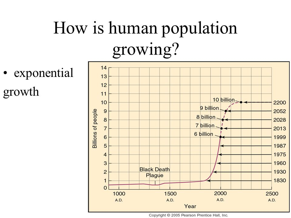 How is human population growing? MN growth