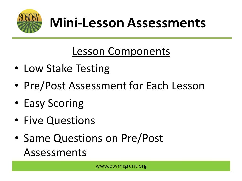 Mini-Lesson Assessments Lesson Components Low Stake Testing Pre/Post Assessment for Each Lesson Easy Scoring Five Questions Same Questions on Pre/Post