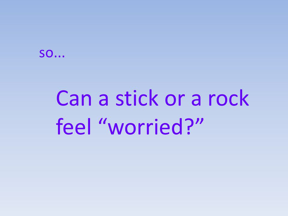 so... Can a stick or a rock feel worried