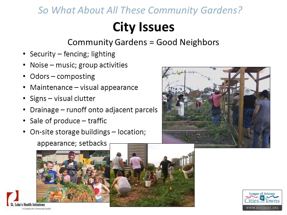 So What About All These Community Gardens? City Issues Community Gardens = Good Neighbors Security – fencing; lighting Noise – music; group activities