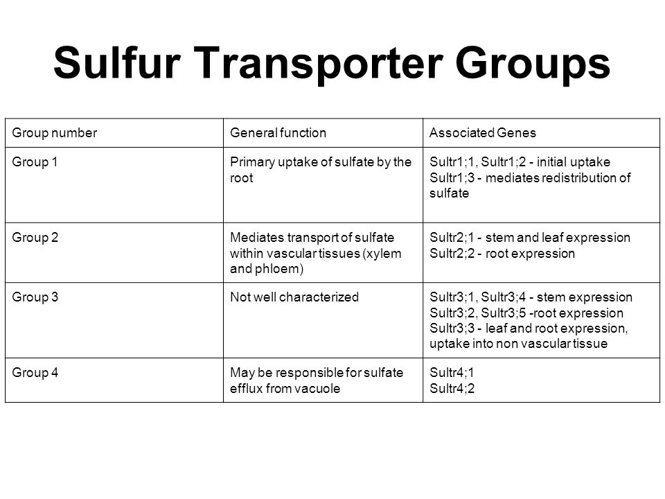 Sulfur Transporter Groups Group numberGeneral functionAssociated Genes Group 1Primary uptake of sulfate by the root Sultr1;1, Sultr1;2 - initial uptak