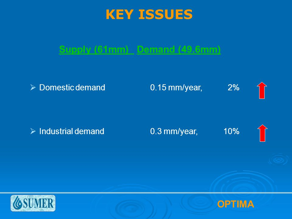  Domestic demand0.15 mm/year, 2%  Industrial demand0.3 mm/year, 10% KEY ISSUES Supply (61mm) Demand (49.6mm)
