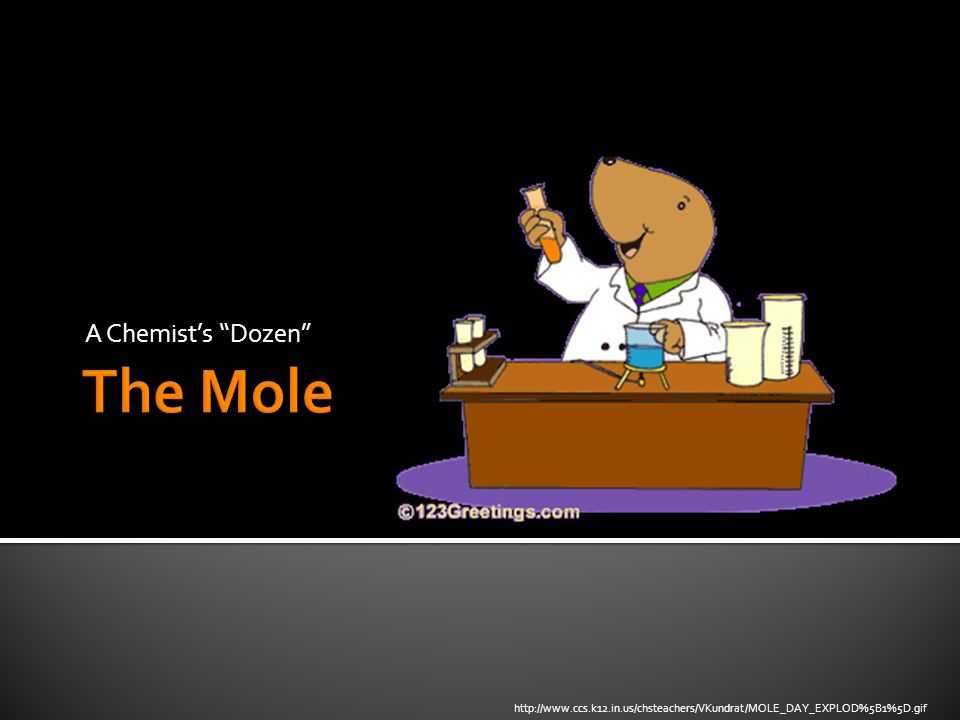 A Chemist's Dozen http://www.ccs.k12.in.us/chsteachers/VKundrat/MOLE_DAY_EXPLOD%5B1%5D.gif