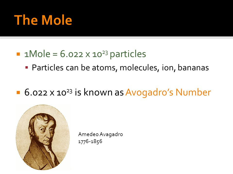  1Mole = 6.022 x 10 23 particles  Particles can be atoms, molecules, ion, bananas  6.022 x 10 23 is known as Avogadro's Number Amedeo Avagadro 1776-1856
