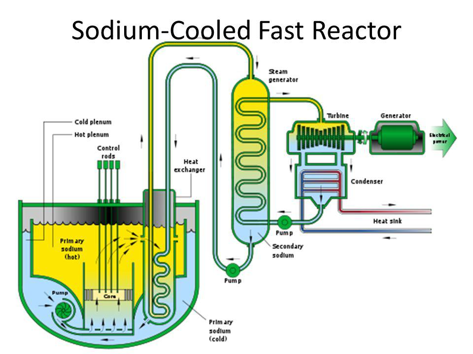 Sodium-Cooled Fast Reactor