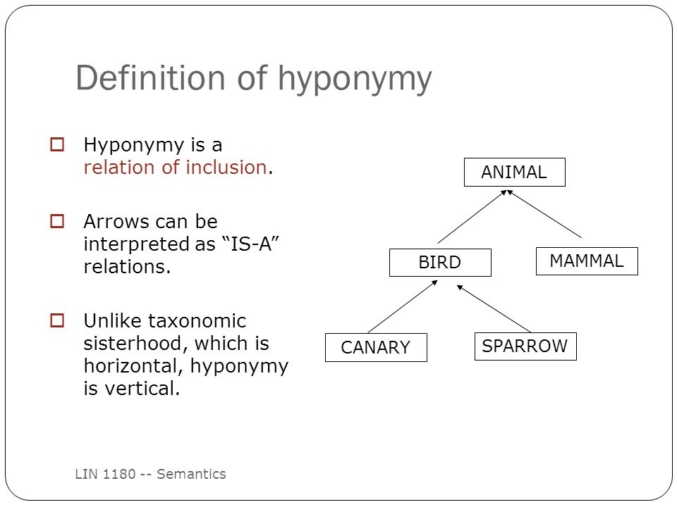 Definition of hyponymy LIN 1180 -- Semantics  Hyponymy is a relation of inclusion.