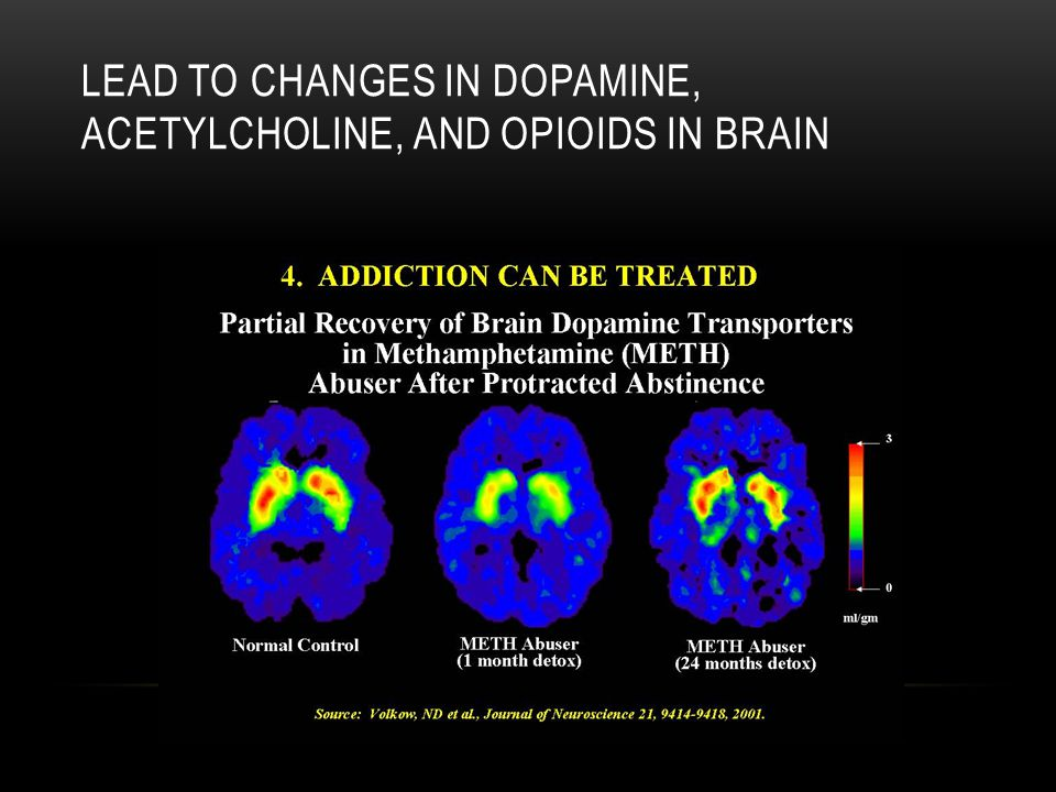 LEAD TO CHANGES IN DOPAMINE, ACETYLCHOLINE, AND OPIOIDS IN BRAIN